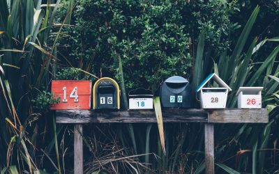The Importance of Building an Email List for Authors